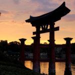 日本を大切に思う人間同士で、互いに相手を引き上げるべき