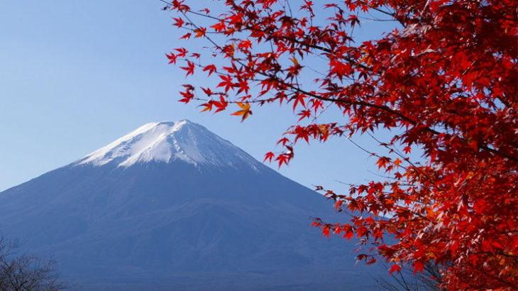 帰化制度は、徹底的に日本に対する愛国心を問いかけるものでなければならない